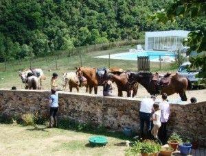 Chevaux et cavaliers en Chambres d'hôtes à Blesle