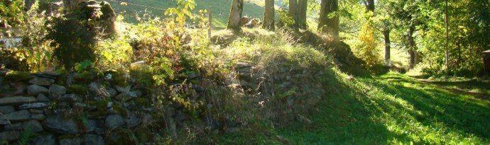 La nature protégée et authentique en Auvergne