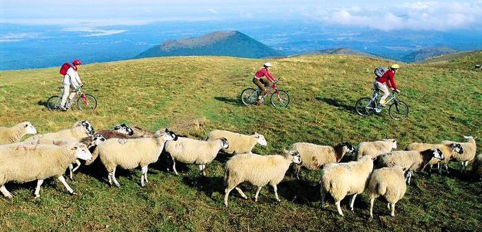 VTT en Auvergne