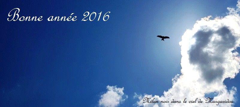Bonne Année 2016 en Auvergne