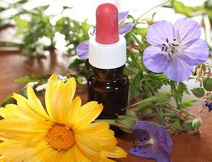 aromatologie-huile essentielle-margaridou-blesle-auvergne