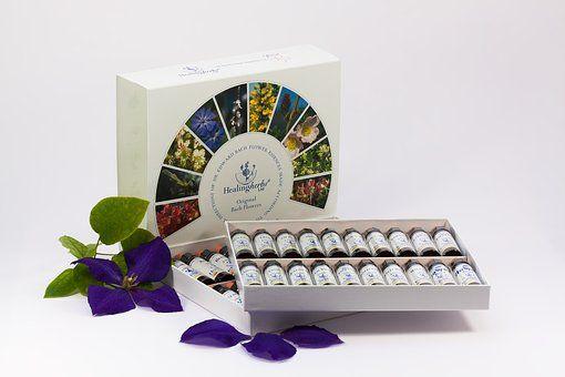 fleur de bach-elixirs floraux-fleur du bush australien-margaridou-blesle-auvergne