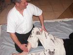 le shiatsu une méthode holistique et globale